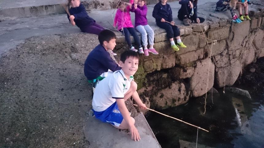 cub-crab-fishing-7